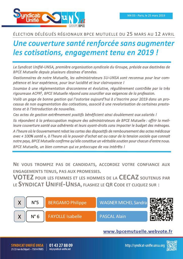 thumbnail of NN 2019-03 BPCE Mutuelle CECAZ